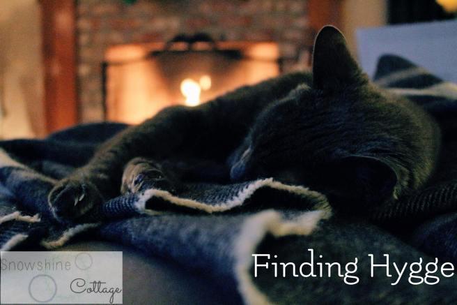 cat-blanket-824161