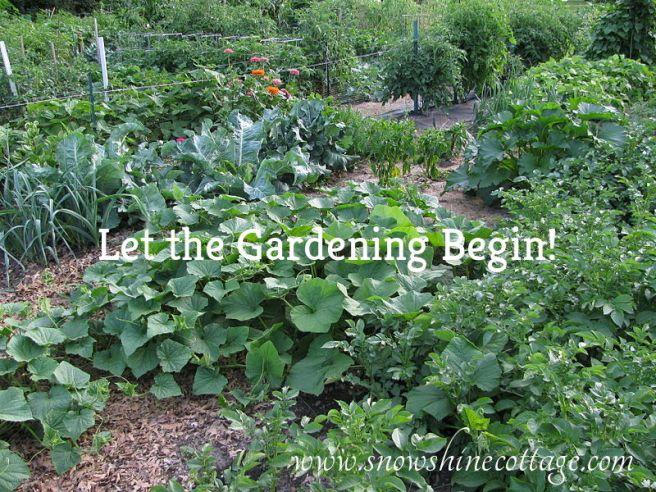 800px-Minnesota_veggie_garden
